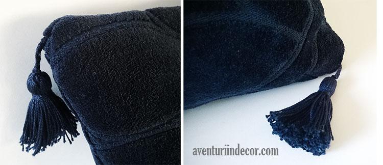 ciucuri-perna-albastra