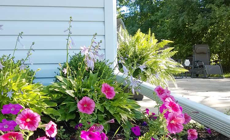 strat-flori-dimineata